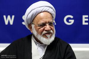 مصباحیمقدم : مجلس دهم، دولت را تنبل کرد