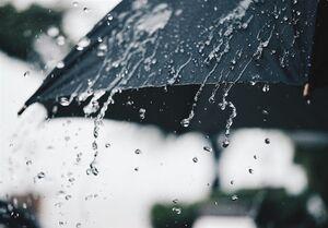 پیشبینی هواشناسی از رگبار، رعدوبرق در تهران