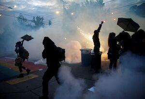 وحشیگری پلیس آمریکا در برخورد با معترضان نمایه