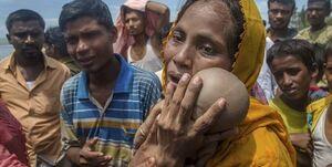 از مسلمانان روهینگیا چه خبر؟