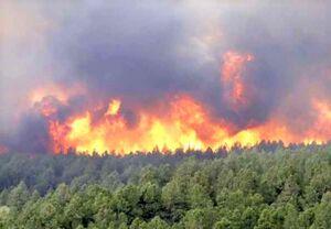دلیل آتش سوزی در دامن خائیز مشخص شد