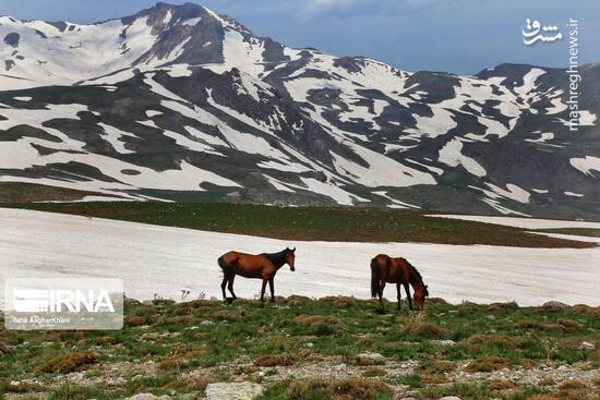 عکس/ طبیعت کوهستانی ارومیه