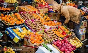 گرانترین و ارزانترین میوههای میادین میوه و تره بار