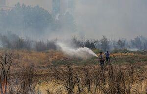 فضای سبز جامعه الزهرا قم در آتش سوخت +عکس
