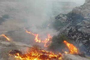 آتشسوزی در جنگلهای اطراف خرمآباد +عکس