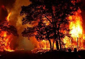 فیلم/ آتشسوزیهای طبیعی یا مشکوک؟