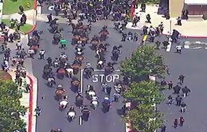 فیلم/ حضور گاوچرونها در راهپیمایی صلح در لسآنجلس