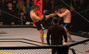 درآمدهای ۶ رقمی فایترها در MMA؟