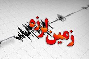 ترس و دلهره زلزله در گناوه +فیلم