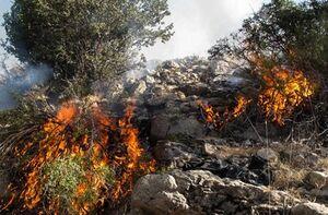 آتش به جان ارتفاعات سیاخ دارنگون افتاد