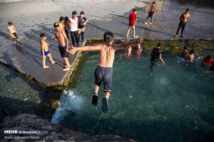 عکس/ آب تنی در چشمه علی