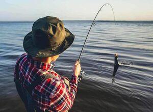 فیلم/ شگفتانگیزترین روش ماهیگیری