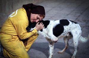 وقتی سلبریتیها حامی حیوانات میشوند+عکس