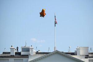عکس/ تمسخر ترامپ بر فراز کاخ سفید