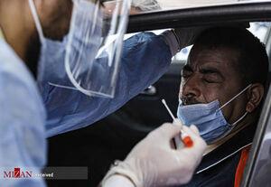 عکس/ تست کرونا از رانندگان مصری