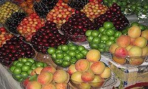 کاهش ۳۰ درصدی قیمت میوه در راه است