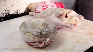 دولت میگوید دست روی دست نگذاشته؛ مسکن و مرغ و تخممرغ شاهدند!
