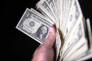 مصرف اختصاصی ارز چه خساراتی به دنبال دارد؟