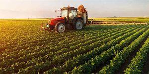 تهدید امنیت غذایی در سایه افزایش چراغ خاموش قیمت کود