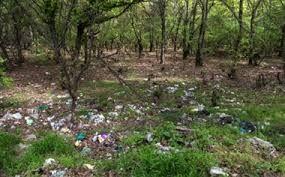 سوزاندن زباله چه عواقبی برای محیط زیست دارد؟ +فیلم