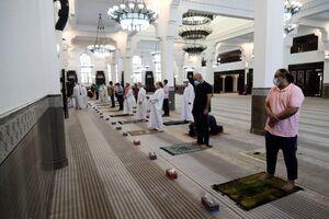 عکس/ بازگشایی مساجد قطر