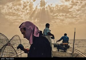 عکس/ بهمناسبت روز جهانی دریانوردی؛ صیادان جزیره خارک