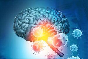 مغز کرونا نمایه