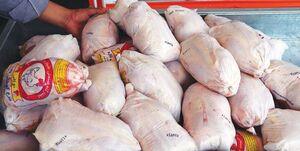 قیمت مرغ منجمد تنظیم بازاری تعیین شد