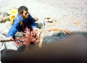 تصاویر/ آخرین صعود از «خلیج فارس»