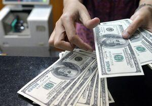 اختلاف ۱۰۰۰ تومانی قیمت دلار از کانالهای دلالی تا صرافیها/ رئیس کانون صرافان: بدون صف دلار بخرید
