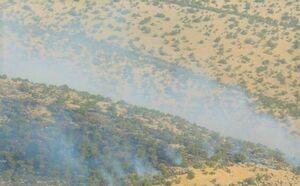 مهار آتشسوزی در کوههای استان بوشهر