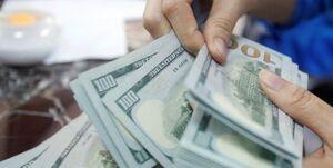 رمزگشایی از دلایل عدم تعادل عرضه و تقاضا در بازار ارز