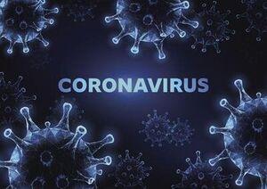 ویروس کرونا میتواند از راه گوش وارد بدن شود؟