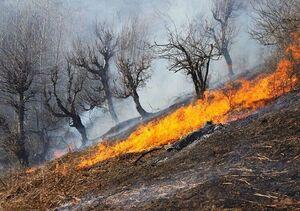 تلاش برای مهار آتش خائیز ادامه دارد +فیلم