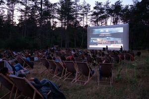 عکس/ سینما در دل جنگل