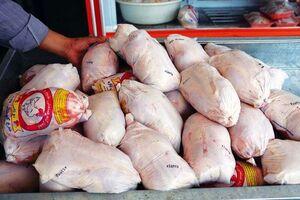 نرخ مرغ زنده داد اتحادیه مرغداران را هم درآورد!