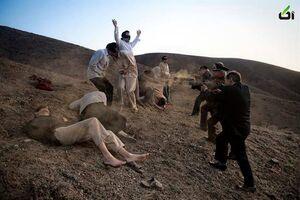 «اعدام نکنید» به سبک پهلویها/ یک روایت عبرتآموز از رافت سلطنتی