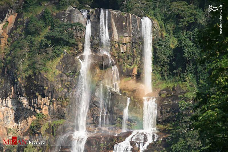 2855629 - عکس/ جذابترین پارکهای ملی تانزانیا