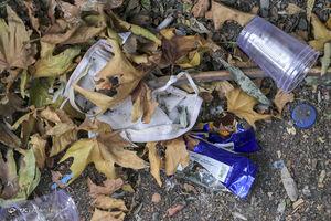 خلق زیبایی از زبالهها در ساحل شیشهای کالیفرنیا +عکس