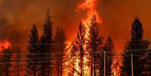 تصاویر   آتشسوزی مهیب در شمال کالیفرنیا