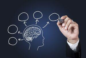 برای داشتن حافظه قوی چه کنیم؟