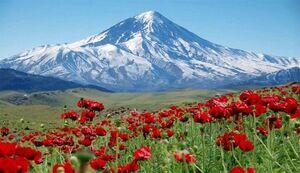 تکذیب صدور سند یک برش از کوه دماوند به نام سازمان اوقاف