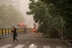 پیشبینی وزش باد شدید در پایتخت