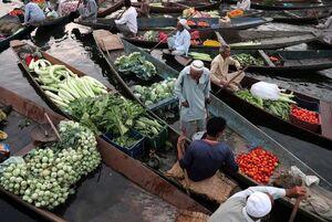 عکس/ بازار شناور در هند