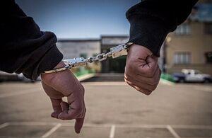 دستگیری عامل اصلی فراخوانها در شادگان