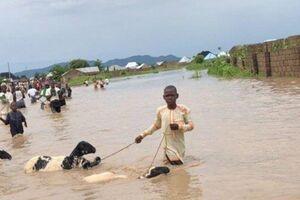 سیل مرگبار در نیجریه