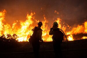 فیلم/ آتشسوزی گسترده در بیشهزارهای مادرید