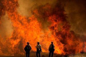 آتشسوزی مهیب در کالیفرنیا | 8000 نفر مجبور به ترک خانههایشان شدند - کراپشده