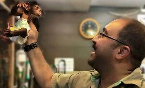 مرگ در یکقدمی تنها بچهشامپانزه ایران +عکس و فیلم