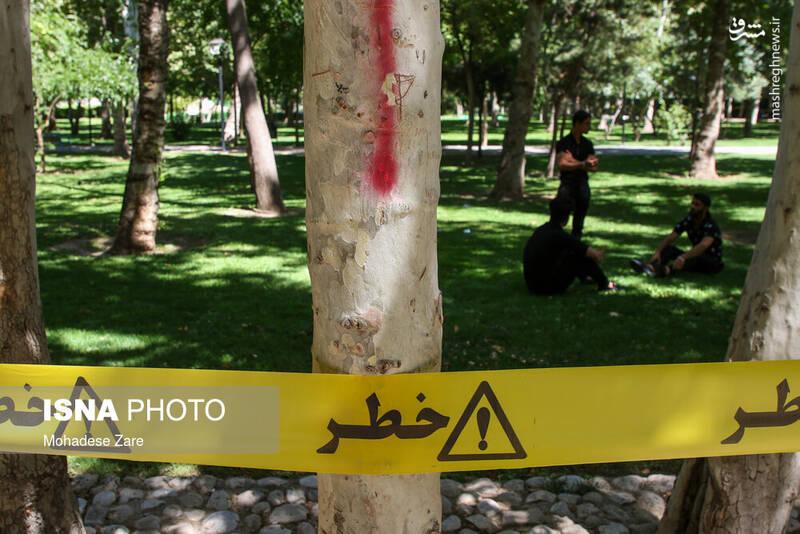 2870982 - عکس/ نوار زرد به معنی وضعیت قرمز است